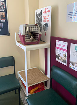 Claremont Veterinary Group's new cat waiting area